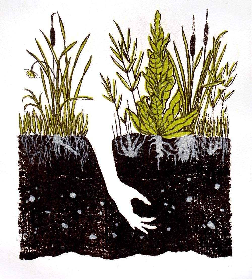 Illustration of a hand reaching down into soil