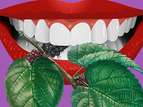 illustration of a mouth clasping mulberries between teeth in an unsettling way