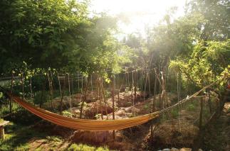 A living garden