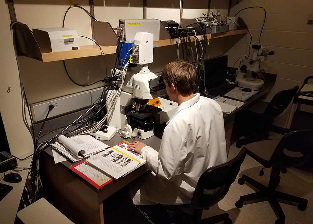Alternate view of student using the Confocal Microscope