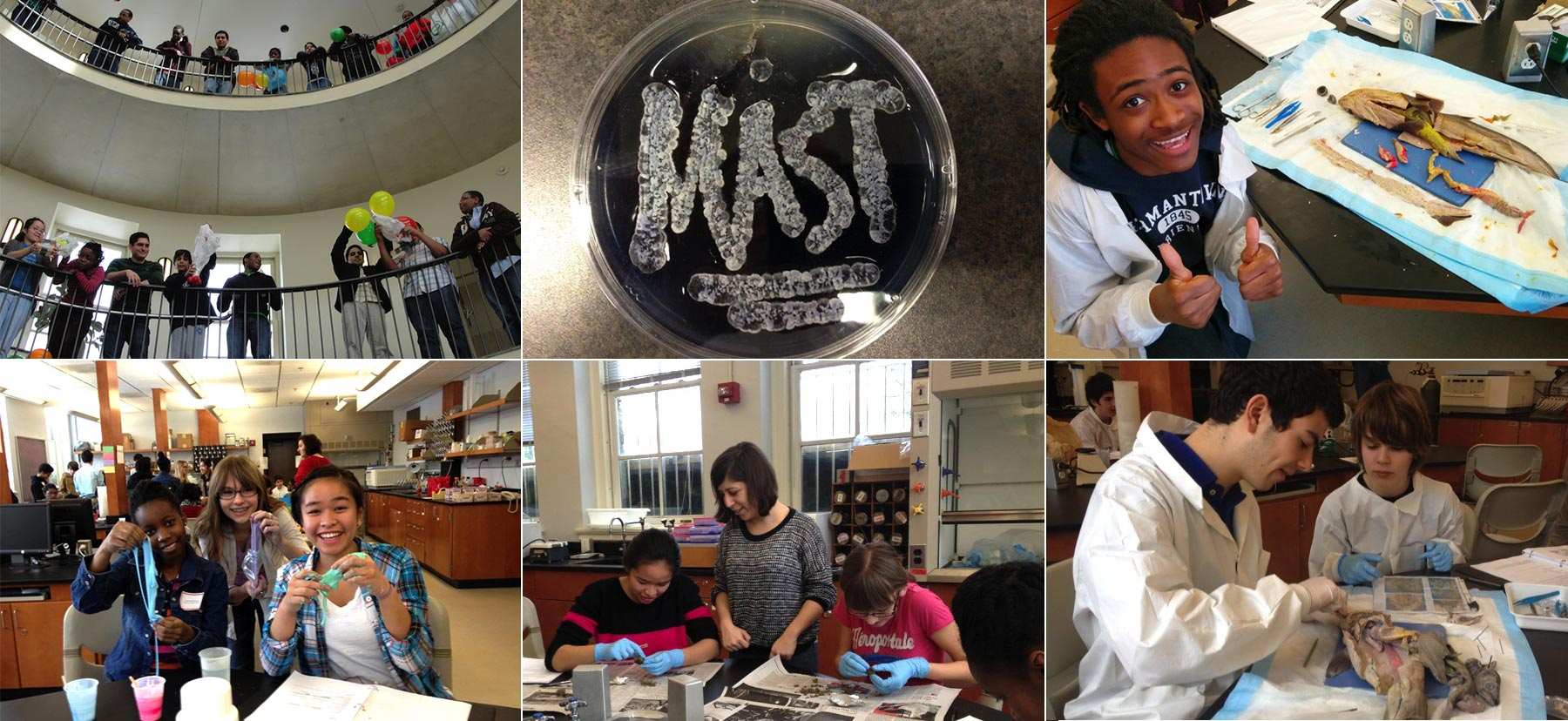 Students participating in the MAST program