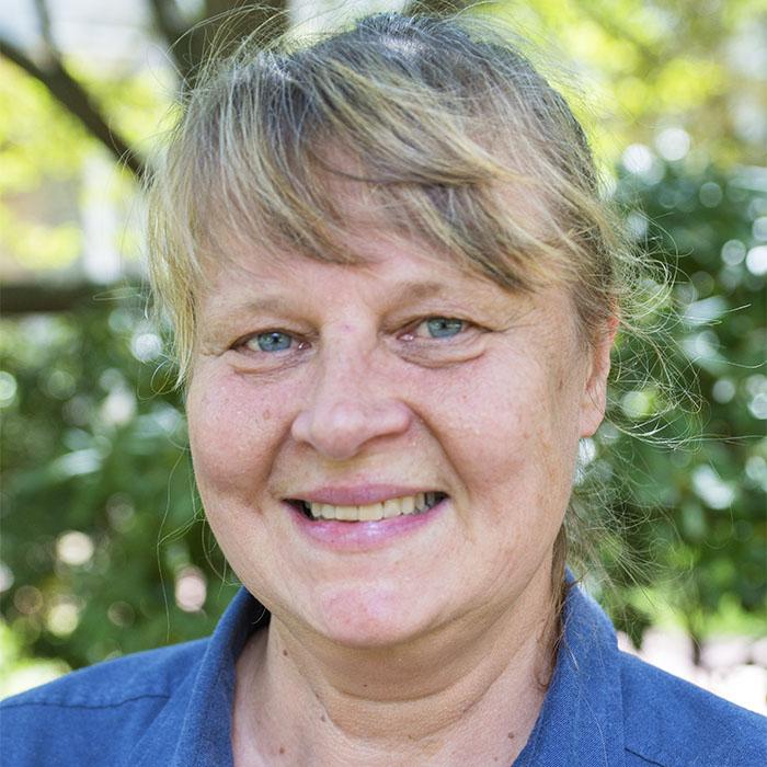 Karin Akerfeldt