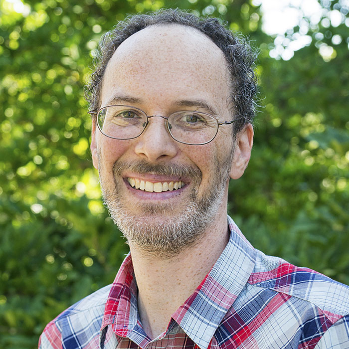 David Lippel