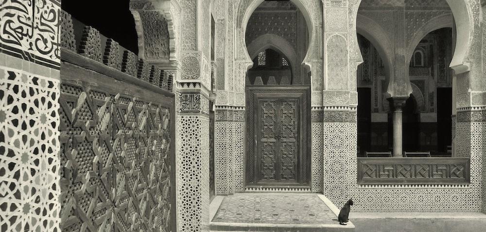 Cat Mosque