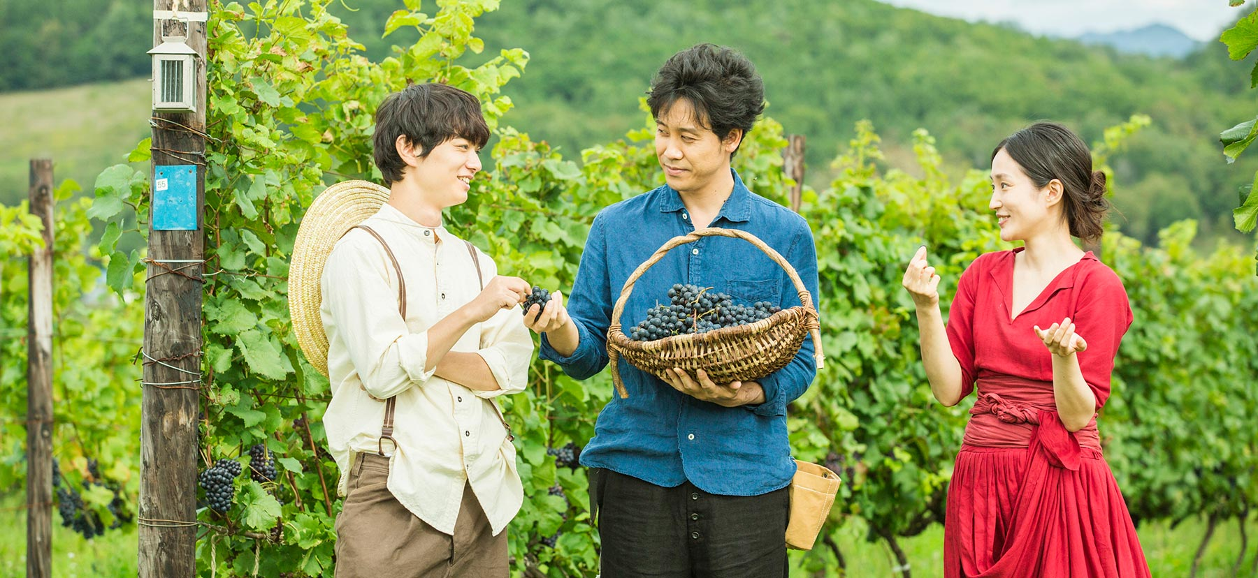 Two men and a woman stand in amidst the grapevines holding a basket full of harvested grapes
