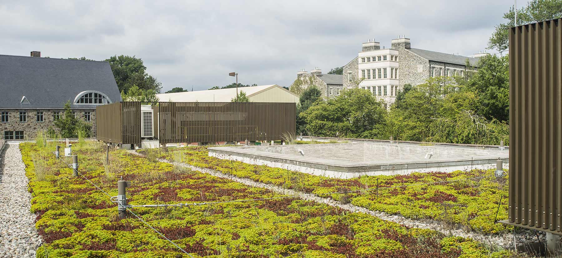 A view from one of Haverford's green rooftops