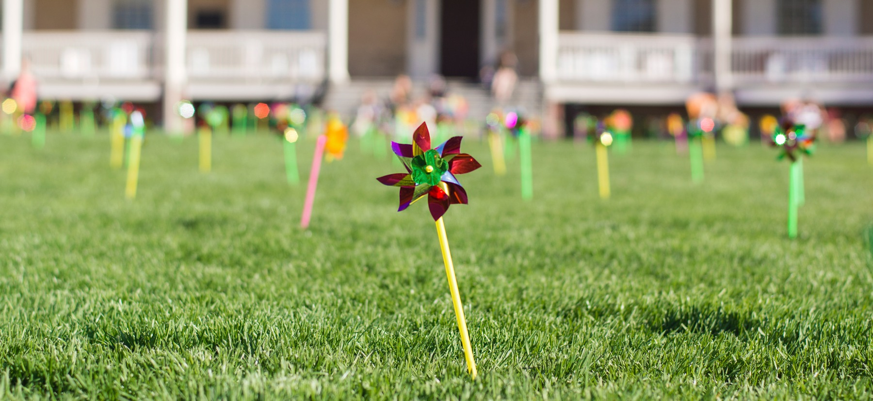 Pinwheels on Founders Green