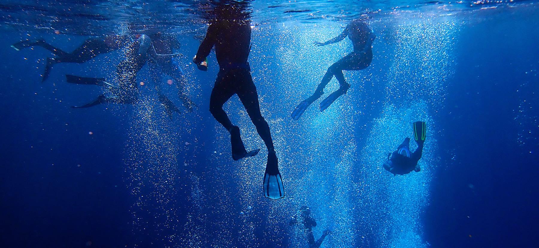 Underwater shot of students snorkeling