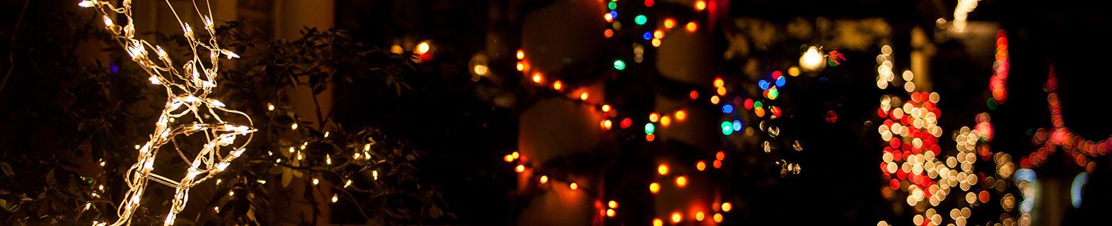 Close up of Lloyd Lights