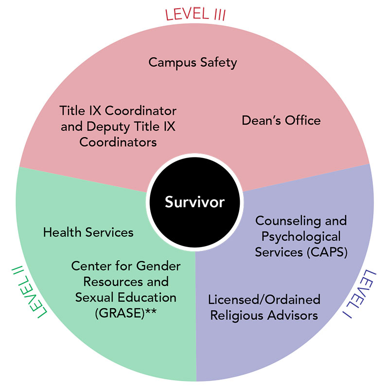 A visualization of levels of support for Sexual Misconduct