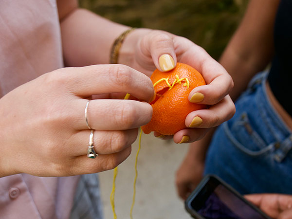 Close up photograph of someone stitching up a clementine