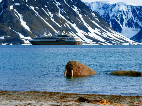 Alumni Travel Program - Arctic Voyage