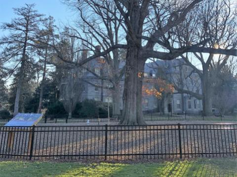 Winter Newsletter 2018 - Haverford College Arboretum