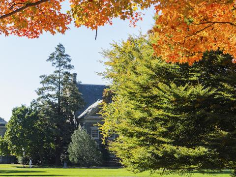 Campus in autumn