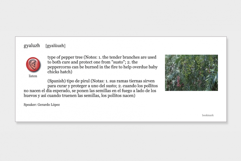 """Talking Dictionary entry for """"gyaluzh"""" with a picture of a green plant"""