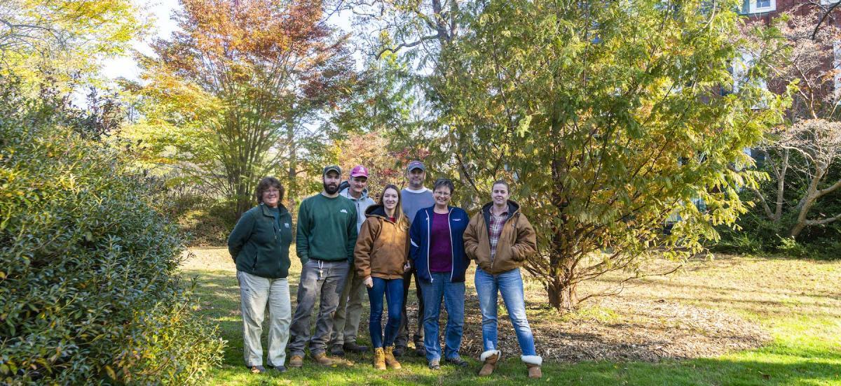 300th Tree Planting