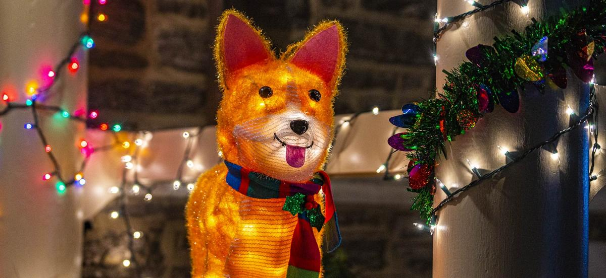 A festive light-up dog in a scarf