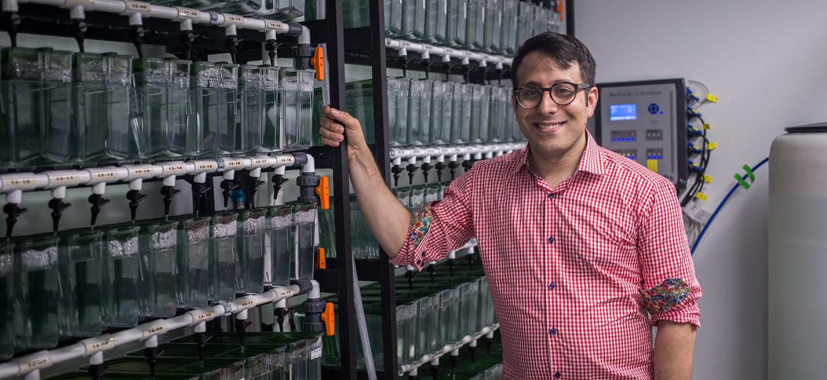 Jain standing in front of rows of zebrafish tanks