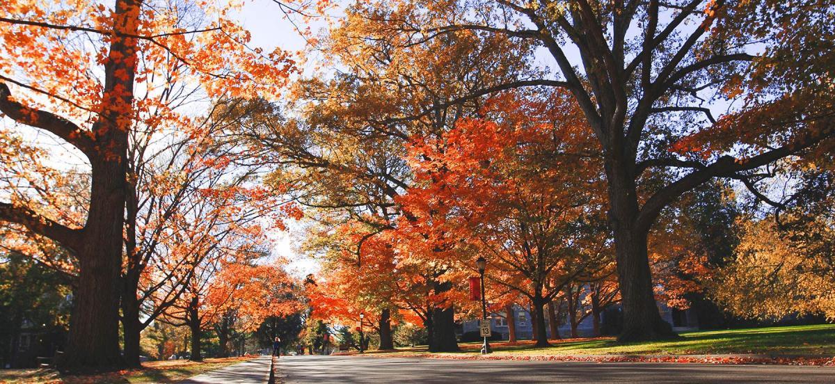 Autumn on Haverford Campus
