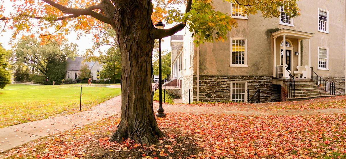 Fall foliage on Haverford College's campus